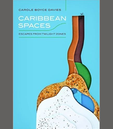 Caribbean Spaces Book Cover